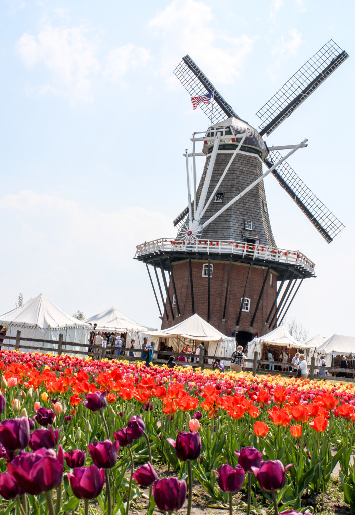 Windmill Island Gardens (Erin Klema/The Epicurean Traveler)