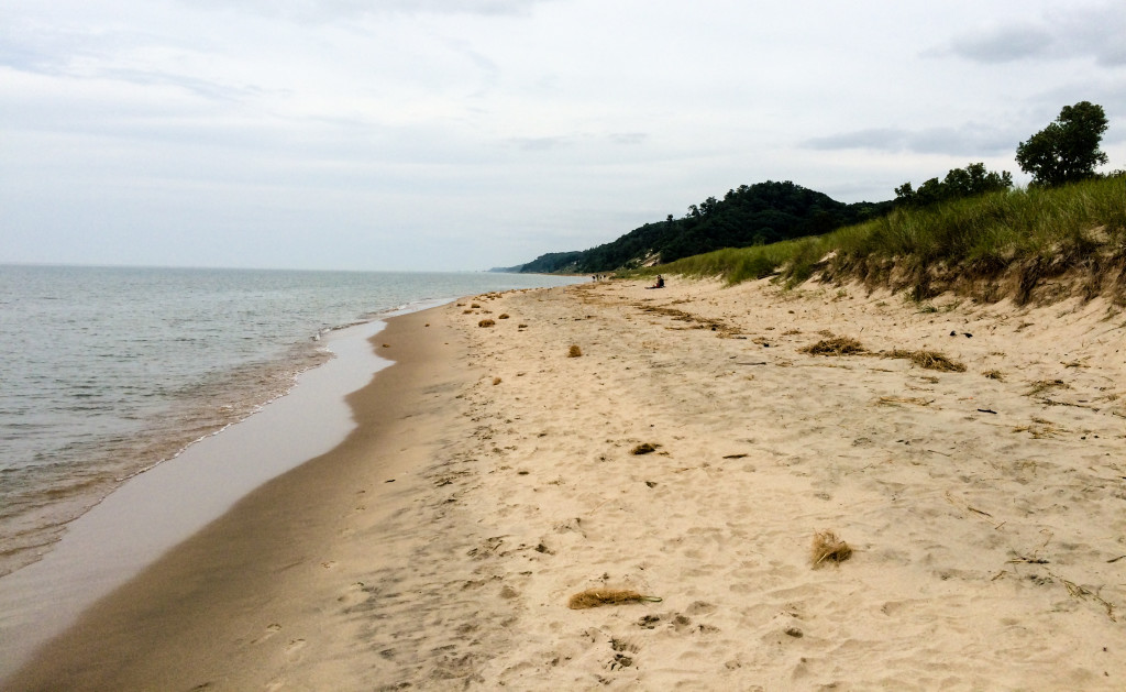 Lake Michigan shore and sand dunes at Saugatuck Dunes State Park in Saugatuck, Michigan