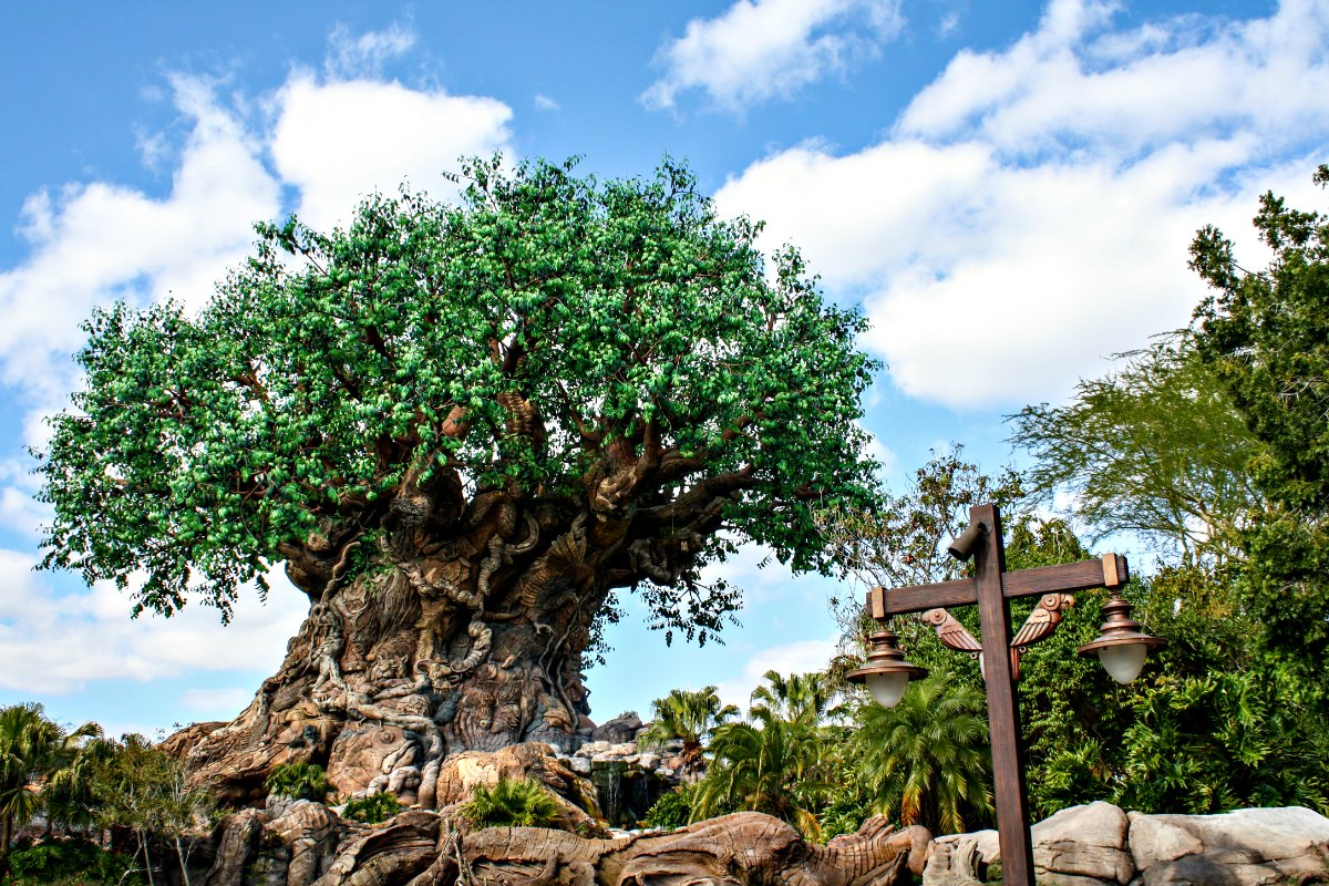 Animal Kingdom | EpicureanTravelerBlog.com