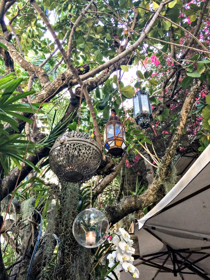 Lanterns hang throughout the lush garden of Casa Tua Restaurant in Miami Beach, Florida | EpicureanTravelerBlog.com