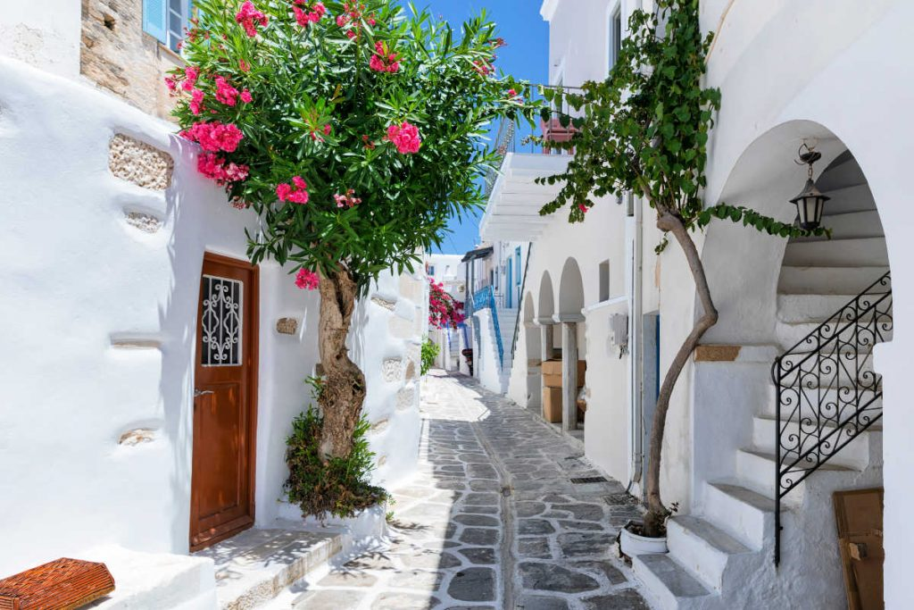 A traditional white alley with colorful Oleander flowers and colored doors in Parikia, Greece, on the Cyclades island Paros