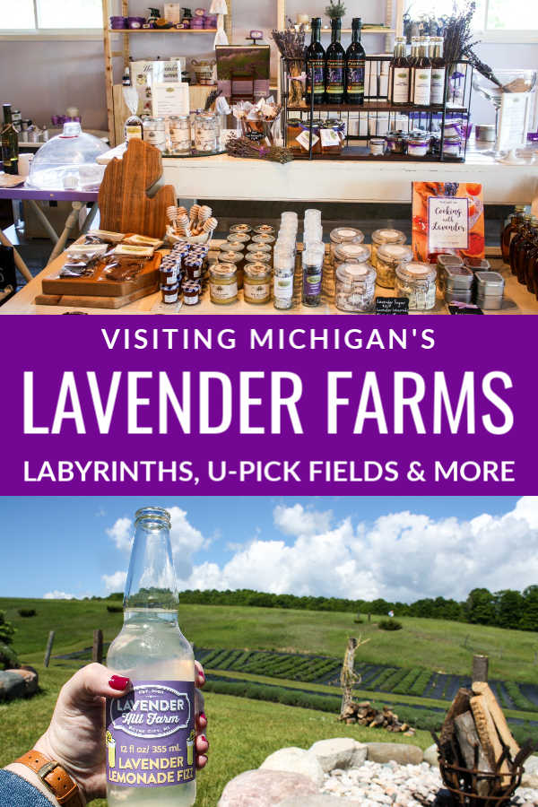 Visiting Michigan Lavender Farms, Labyrinths, U-Pick Fields, and More
