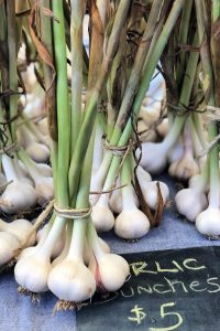 Garlic bunches for sale at Bloomington Community Farmers' Market