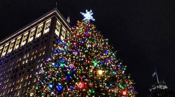 Detroit Christmas Tree at Campus Martius Park