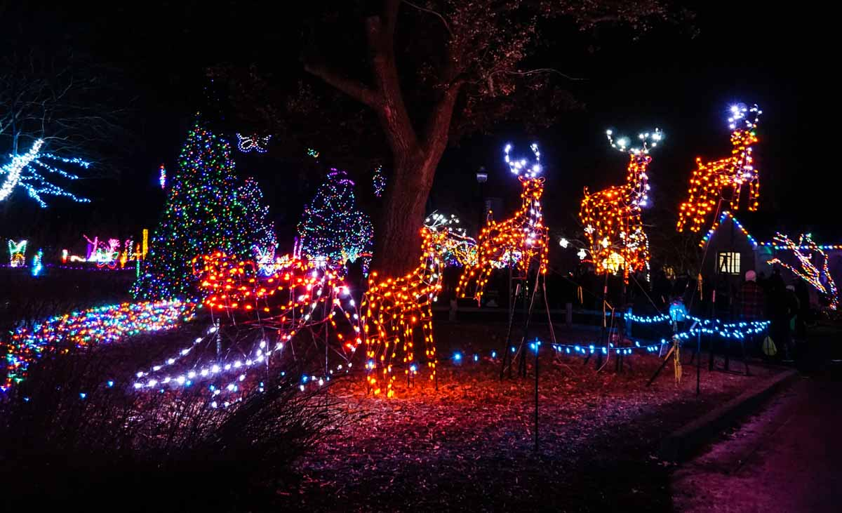 Santa's sleigh and reindeer light display at Wild Lights at Detroit Zoo