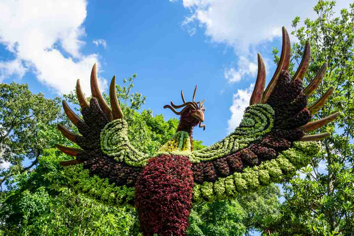 Phoenix living sculpture at Atlanta Botanical Garden in May 2019